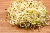 Alfalfa and radish sprouts on wooden table — Stock Photo