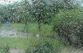 Kapią krople deszczu na szybie — Zdjęcie stockowe