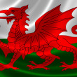 Welsh Flag — Stock Photo #52090313