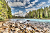 Bow River in Banff National Park — Stock Photo