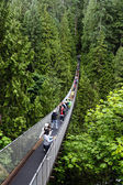 Capilano Suspension Bridge in Vancouver — Stock Photo
