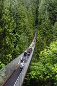 Capilano Suspension Bridge in Vancouver — Stock Photo