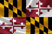 Maryland State Flag — Stock Photo
