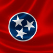State of Tennessee Flag — Stock Photo #54208823