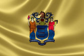 New Jersey State Flag — Stock Photo
