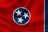 State of Tennessee Flag — Stock Photo