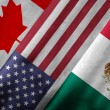 3D Rendering of North American Free Trade Agreement NAFTA Member — Stock Photo #55106165