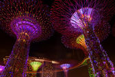 Dazzling Light Show At The Supertree Grove And Marina Bay In Singapore — Stock Photo