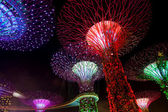 Dazzling Light Show at the Supertree Grove and Marina Bay in Sin — Stock Photo