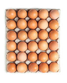 Brown eggs in a package isolated on white — 图库照片