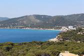 Palma De Mallorca - Spain Nature — Stock Photo