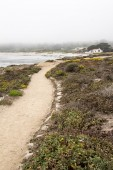 Sandy trail on seashore — Stock Photo