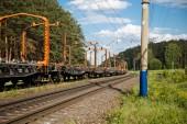 Speciaal transport van railway in de natuur — Stockfoto