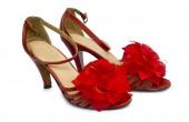 Kobiety buty na białym tle na białym tle — Zdjęcie stockowe