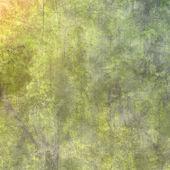 Гранж стены, высоко детализированные текстуры фона — Стоковое фото