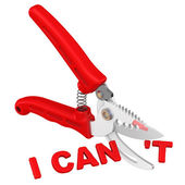 I can. The concept of changing the conclusion — Stock Photo