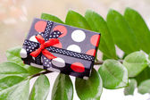 Present box on green leaves — Foto de Stock