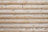 Logs — Stockfoto