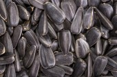 Food background from black seeds of sunflower — Stock Photo