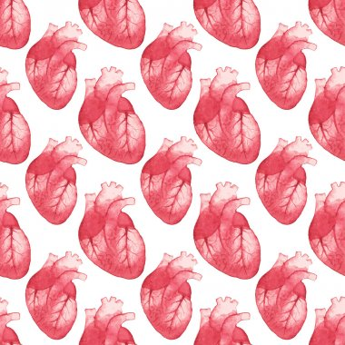 Watercolor seamless pattern with realistic human heart on the white background, aquarelle.  Vector illustration.