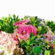 Bouquet of flowers with roses and hydrangeas — Stock Photo #64027487