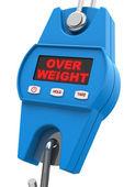 Overweight — Stock Photo