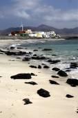 Avrupa kanarya adaları fuerteventura — Stok fotoğraf