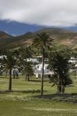 L'Europe Iles Canaries Lanzarote — Photo