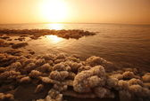 ASIA MIDDLE EAST JORDAN DEAT SEA — Стоковое фото