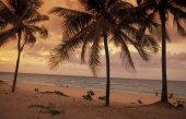 AMERICA CUBA VARADERO BEACH — Stock Photo
