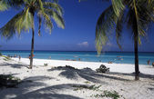 AMERICA CUBA VARADERO BEACH — Stock Photo