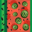 Watermelon and seeds from watermelon. — Stock Vector #52268365