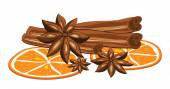 Cinnamon, anise and orange on a white background. Vector illustration. — Stock Vector