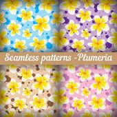 Plumeria. Set — Vector de stock