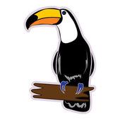 Vogel toucan — Stockvector