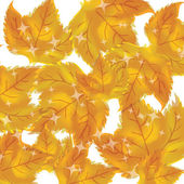 Pattern of autumn leaves Vector — Stock Vector