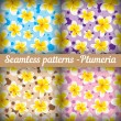Plumeria. Set of seamless patterns. Floral background — Stock Vector #54537111