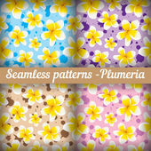 Plumeria. Set of seamless patterns. Floral background — Stok Vektör