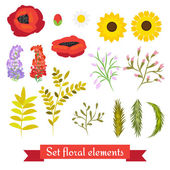 Vector floral set. Collection leaves and flowers. — Vettoriale Stock
