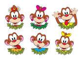 Set funny monkeys. Symbol of the year 2016. — Stock Vector