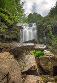 Waterval in het forest — Stockfoto