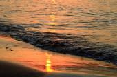 Shoreline at sunset — Stock Photo