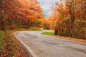Camino de la madera — Foto de Stock