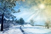 Verschneite landschaft — Stockfoto