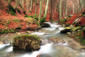Isolated rock into the stream — Foto Stock