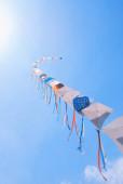 Kites — Foto Stock