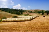 Hay bales grouped — Stock Photo