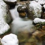 Stream in winter — Stock Photo #56081571