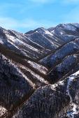 Berg im winter — Stockfoto
