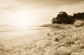 Zonsondergang op de kust — Stockfoto